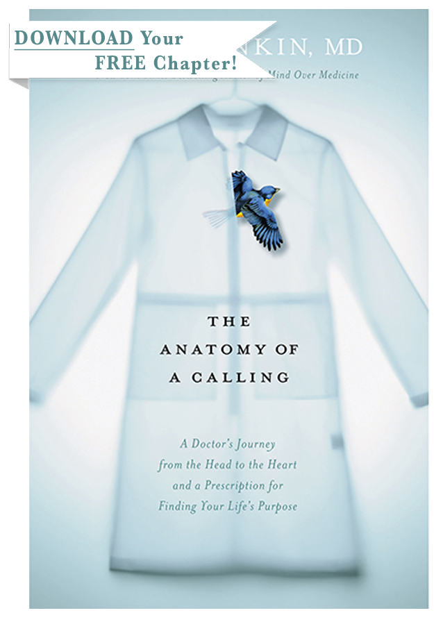 The Anatomy Of A Calling Read The Book